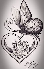 collection of 25 butterfly n flowers sketch