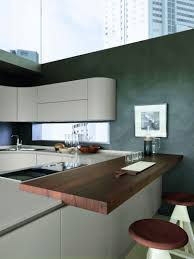 kitchen dazzling charming modern kitchen cabinets in high end
