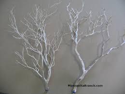 manzanita branches wholesale manzanita branches
