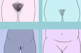 how to shave shapes into your pubic hair how normal are your body hair opinions