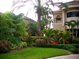 Florida Backyard Landscaping Ideas by 36 Best Landscaping Images On Pinterest Florida Landscaping