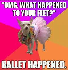 Dance Memes - 382 best dance memes images on pinterest ballet dance ballet