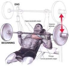 Incline Bench Technique Exerciseoftheweek Tag Someone Who Would Benefit From This Exercise