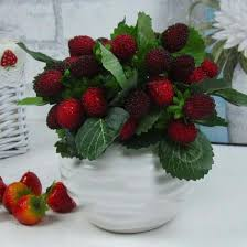 online buy wholesale artificial strawberry plants from china