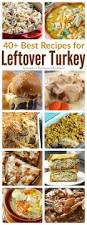 amazing thanksgiving turkey recipes 40 best recipes for leftover turkey the resourceful mama
