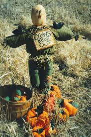 scarecrow halloween decorations 46 best if i only had a brain images on pinterest