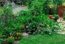 edible landscaping rosalind creasy vegetable gardening fruits
