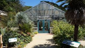 Berkeley Botanical Gardens Uc Botanical Garden