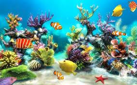 wallpaper animasi tablet aquarium wallpaper hidup untuk membuat android anda lebih hidup