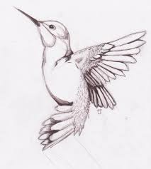 pencil drawing ideas ofs sketch birds drawing drawing art gallery