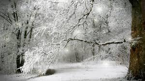 snowy winter scenes wallpaper 44 images