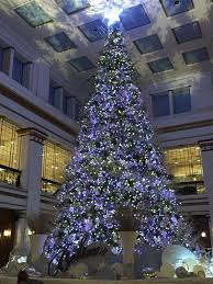 chicago tree lighting 2017 179 best chicago christmas images on pinterest chicago christmas
