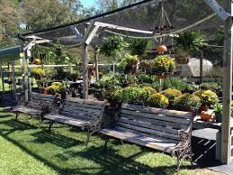 little miss sunshine garden shop