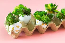Succulent Planter Diy by Diy Faux Succulent Easter Egg Planters Sarah Hearts