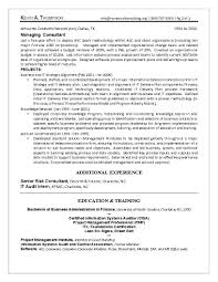 It Program Manager Resume Sample 100 Project Manager Resume Objective Statement Examples