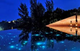 eye catching landscape lighting u2014 home technology experts