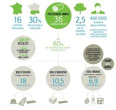 chambre agriculture 16 forêt en infographies chambres d agriculture