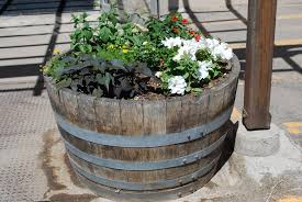 Half Barrel Planters by Pl Box Oak Wine Barrel Planter U2014 The Redwood Store