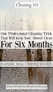 Bathtub Cleaning Tricks Best 25 Shower Cleaning Tips Ideas On Pinterest Shower Cleaning