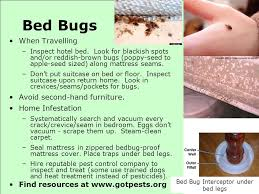 Bed Bug Interceptor Sustainable Pest Control For Home And Garden Ppt Download