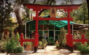 imagenes de jardines japones el jardín japonés de buenos aires