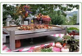 cuisine sur plancha plancha sud planchas aux meilleurs prix spécialités basques