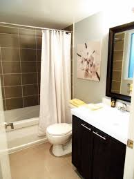 ideas for small bathrooms apartment bathroom decorating idolza
