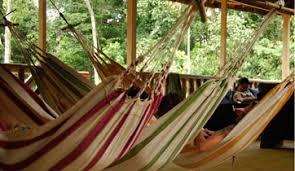 black friday amazon hammock amazon dolphin lodge amazon tour happy gringo travel