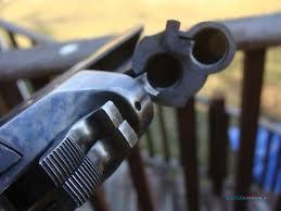stevens for sale on gunsamerica buy a now