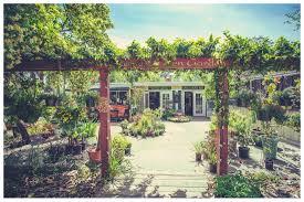 lotus cafe and juice bar at zen garden