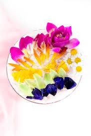 rainbow cocktail recipe edible flower rainbow sour cocktail recipe sugar u0026 cloth