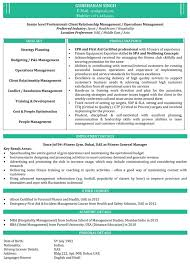 mba resume template mba resume template health symptoms and cure