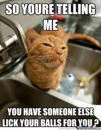 The Best Cat Memes - skeptical cat meme by tuzogodinez09 memedroid