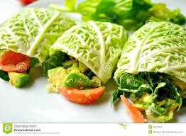 raw food diet with fresh vegan rolls stock photos image 30047523