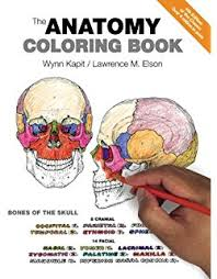 parts of the body coloring pages for preschool amazon com the human body coloring book 8589097777771 dk