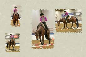 sizzler thanksgiving mares page little valley quarter horses