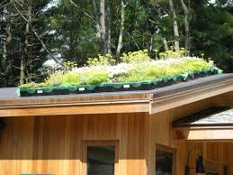 rooftop garden design roof garden design pdf the garden inspirations
