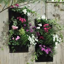 Modern Hanging Planter by Compare Prices On Pocket Gardens Online Shopping Buy Low Price