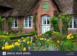 Flowers In Garden Colourful Flowers In Garden Of Frisian Traditional House With