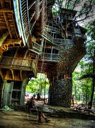 The coolest tree house iv ever seen  Imgur