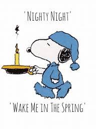 Nighty Night Meme - nighty night wake me in the spring meme on esmemes com