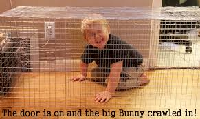 Large Bunny Cage How To Build A Wire Rabbit Cage Heartfelt Angoras