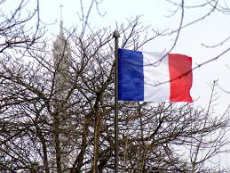 Frebch Flag National Flag Of France French Moments