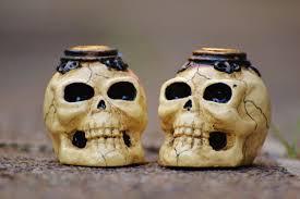Human Anatomy Skull Bones Free Images Ceramic Halloween Death Material Human Anatomy
