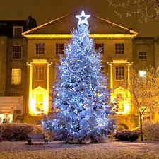 big christmas the big christmas tree switch on 2017 discover clifton