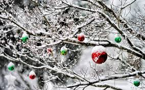 photo collection ornament snow tree wallpaper