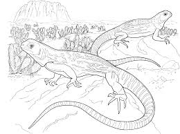 realistic frill necked lizard lizard coloring pages picture 16