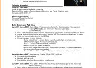 Top Ten Resume Format Hybrid Combination Best Resume 1 Best Example Resume Resume