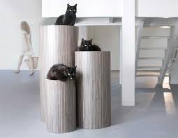Modern Design Cat Furniture by Cat Beds Saltato U0026 Intellato Modern Cat Furniture Pets Trends