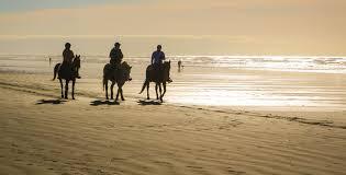 horseback riding on a beach near nyc offmetro ny